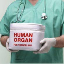 Этические проблемы трансплантации органов и тканей