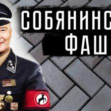 Против фашизма Собянина