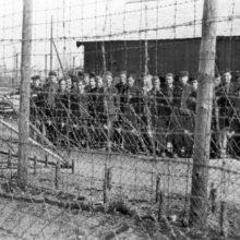 Против геноцида со стороны государственных структур